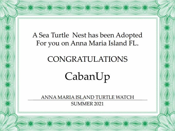 Turtle Watch Certificate